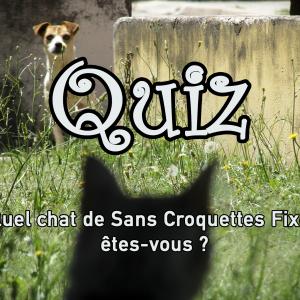 QUIZ : Quel chat de Sans Croquettes Fixes êtes-vous ?