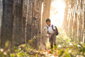 Le chien: votre meilleur allié pour lutter contre le stress de vos enfants