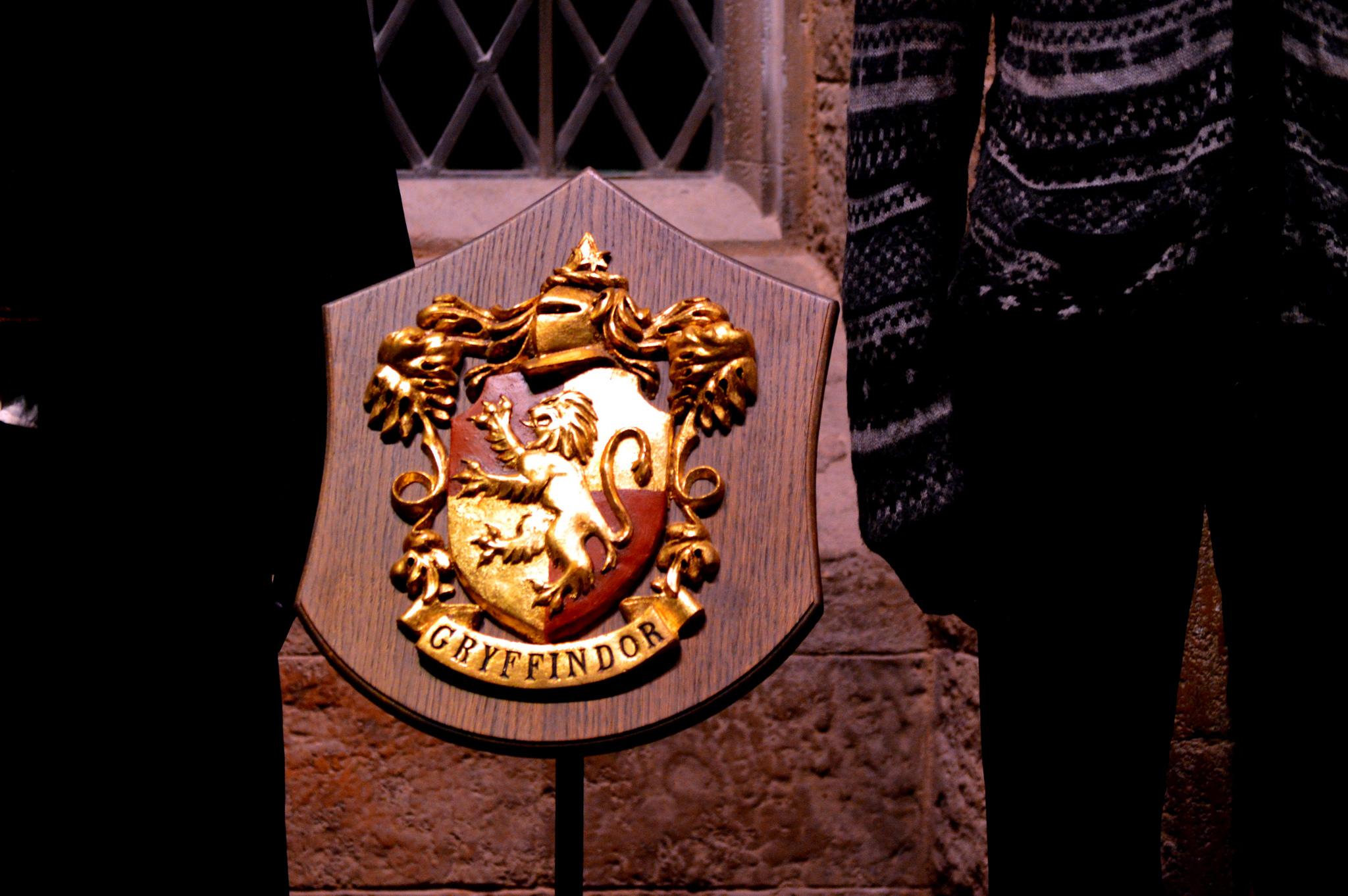 un refuge pour animaux s'inspire d'Harry Potter