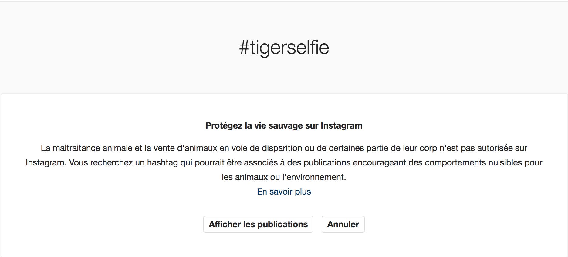 instagram s'engage pour la cause animale
