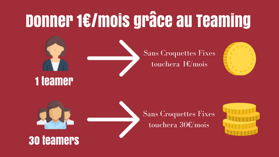 aider l'association sans croquettes fixes