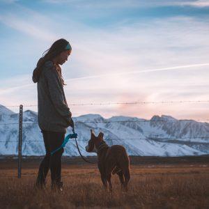 Lyon : comment devenir famille d'accueil pour animaux ?