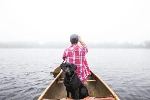 3 qualités à avoir afin de s'occuper correctement d'un animal
