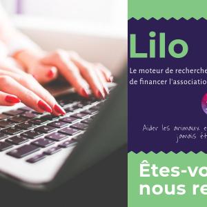 Lilo: financer Sans Croquettes Fixes en faisant des recherches internet