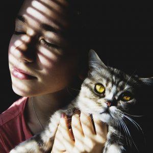 5 signes qui montrent que votre chat vous aime