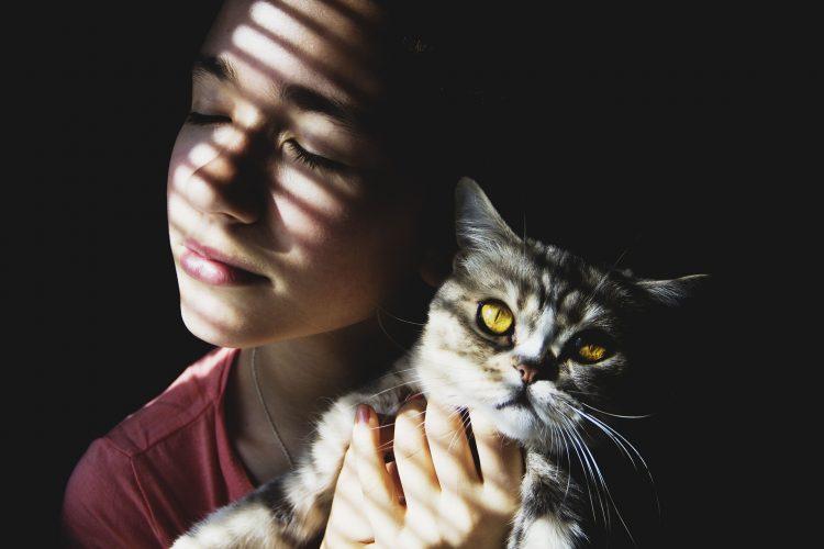 signes qui montrent que votre chat vous aime