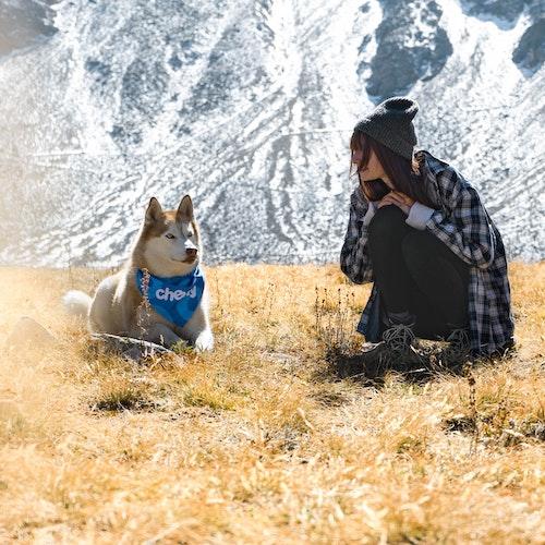 devenir famille d'accueil pour chien à lyon